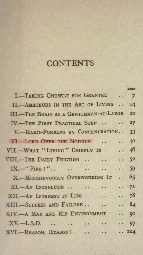 "Table of Contents Showing ""Lord Over the Noddle"" Is Chapter VI"